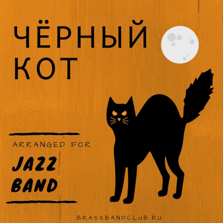 Чёрный кот.png